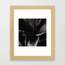 Lily Petal Closeup Framed Art Print