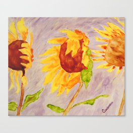 Sunflowers | Tournesols Canvas Print