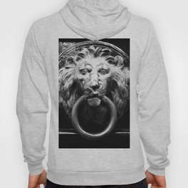 shot on iphone .. lion in brass Hoody