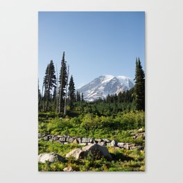 Mount Rainer in the fall. Canvas Print