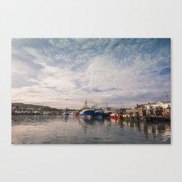 Irish landscape in Howth Canvas Print