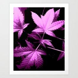 DaPlant Purple - #GreenRush Collective Art Print