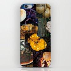 Autumn Mushrooms iPhone & iPod Skin