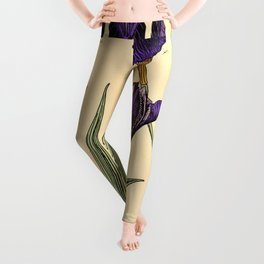 Maurice Verneuil - Iris germanique - botanical poster Leggings