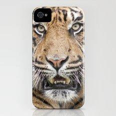Tiger Slim Case iPhone (4, 4s)