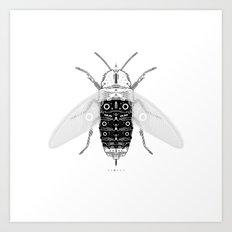 entomology 03. (iii) Art Print