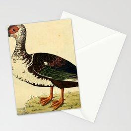 Muscovy Drake7 Stationery Cards