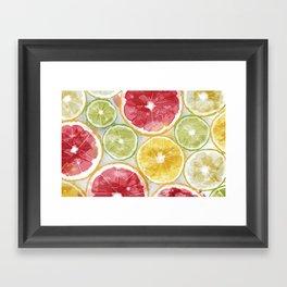 Citrus Splash Framed Art Print