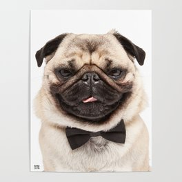 Helmut the Pug - Bow Tie Poster
