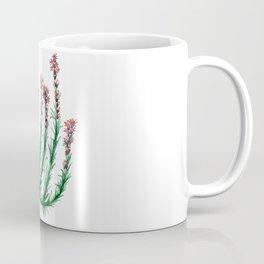 Heller's Blazing Star Coffee Mug