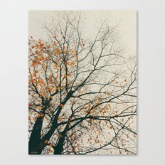 when autumn comes to it's end Canvas Print