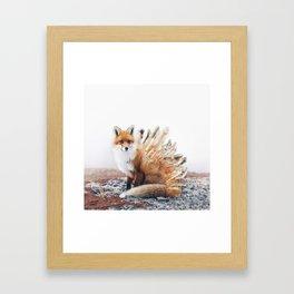 Crystal Fox Framed Art Print