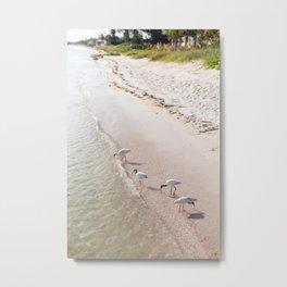 Summer Tide Metal Print
