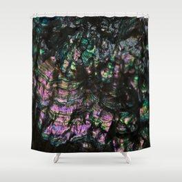 Abalone Shell 4 Shower Curtain