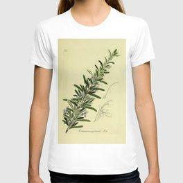 Botanical Rosemary T-shirt