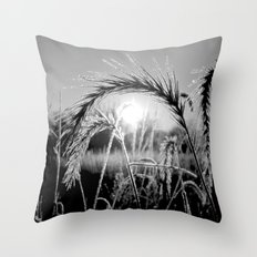 Wheat Sunrise B&W Throw Pillow