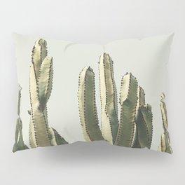 Desert Cactus 2 Pillow Sham
