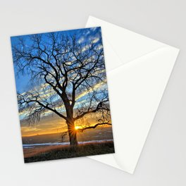 Sunburst Cottonwood Stationery Cards
