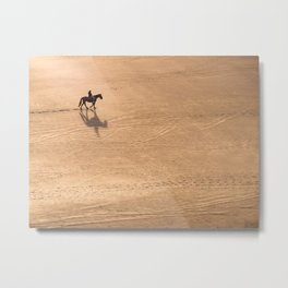 On a horse with no name Metal Print