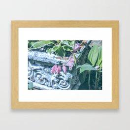 Soft Pink Bleeding Hearts Framed Art Print