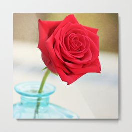 Scarlet Rose Metal Print