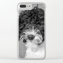 Thoughtful Labradoodle Clear iPhone Case