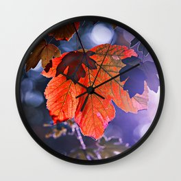 Autumn Photography - Sunlight On Red Leaf Wall Clock
