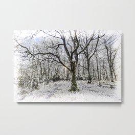 English Forest Snow Metal Print