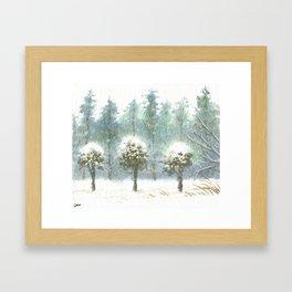 Three Cedars Snow Framed Art Print