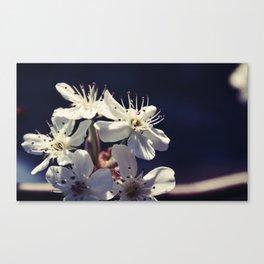 Floral 30 #flower Canvas Print