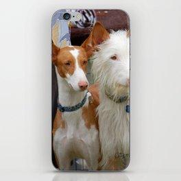 Two Coats - Same Breed iPhone Skin