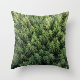 plant, texture, nature, conifer, green, branch, coniferous, background, tree, evergreen, forest, nat Throw Pillow