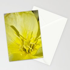 Beach Flower Stationery Cards