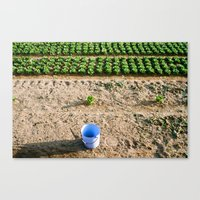 farm Canvas Prints featuring Farm  by Eva Montauk