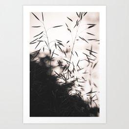 Summer Haze Art Print