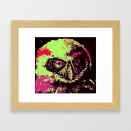 Rainbow Spectacled Owl Framed Art Print