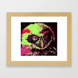 Rainbow Spectacled Owl Framed Art Print
