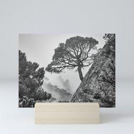 Mountains tree. Spring foggy. Mini Art Print