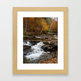 Small Fall Framed Art Print