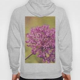 Alliums Hoody