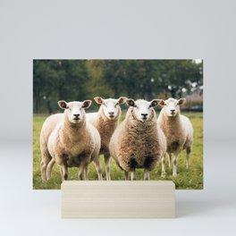 Sheep Life V Mini Art Print