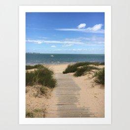Breezy Seaside Path Art Print