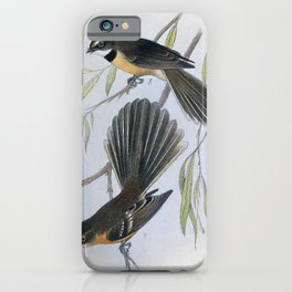Vintage Print - The Birds of Australia (1910) - Lord Howe Fantail iPhone Case