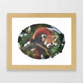Green Panda (2010) Framed Art Print
