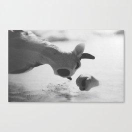 Animal Farm: Udder Despair Part 2 Canvas Print