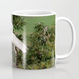 White Egret Family Coffee Mug