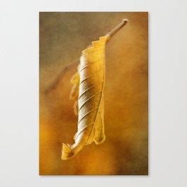 Autumn #4 Canvas Print
