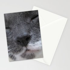 Cutest Kitty-cat ever! Stationery Cards