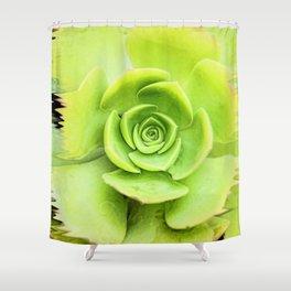 Pouring Paint Succulent Shower Curtain