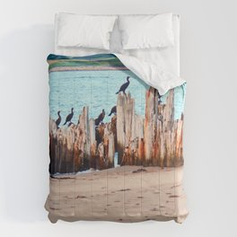 Perched on Wharf Remains Comforters
